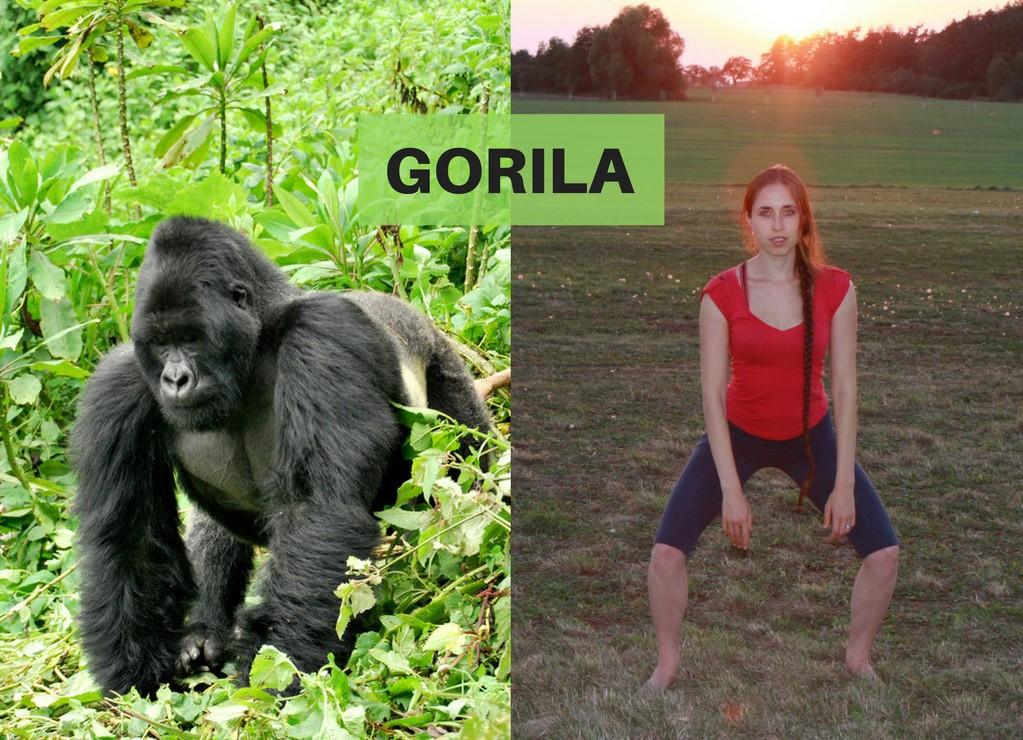 gorila-png